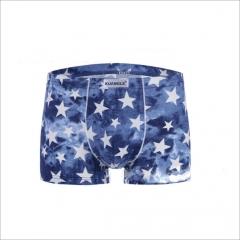 Men's Brand Boxer Shorts Male Men Modal Underwear Boxer Shorts  Homem Cueca 3D hz0001 l