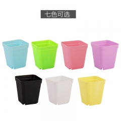 "Nursery Seeding Plant Pots 2.8"" Plastic Flower, Vegetable Planer with Saucer Tray muliticolor 10Pcs"