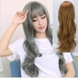 Long haired woman with long wavy hair, long hair, air, bangs, wig, grandmother, grey hair E Free Size