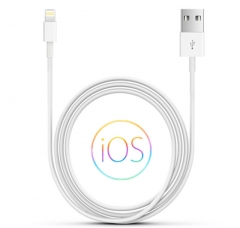 USB Data Charging Cable 3.28 feet (1 meter) for iPhone (White) Original White