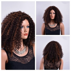 Virgin Afro Curly Synthetic Wigs for Black Women Fake little wave Hair black #