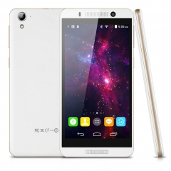 "LANDVO V7, 5.0"" HD Screen, Android 4.4, Dual Core, Smart Wake White+Gold"