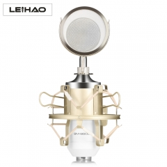 BM - 8000 Professional Sound Studio Recording Condenser Microphone with  Plug Stand Holder White One size none