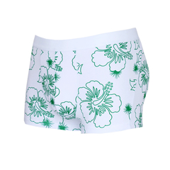 Men's Cotton Eco-Friendly Print Boxer Briefs Fashion Design Green 2XL