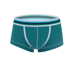 Fashion Design Elastin Cotton Men's Sexy Colorful Low Waist Boxers Lake Blue S