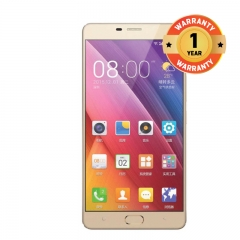 Gionee P5 Mini golden