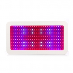 2000W Double Chips LED Grow Light for Hydroponic Medical Indoor Plant Growing white one size 2000W