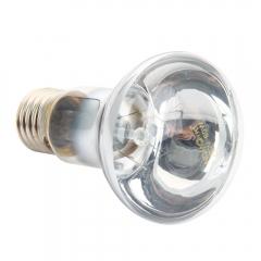 Reptile Basking Light UVA Heater Lamp Bulb Brooder 220V 40W 60W as picture one