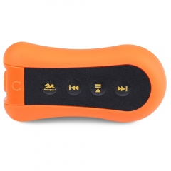 Multicolor Portable Waterproof USB 2.0 Clip 8GB Internal Storage Music MP3 Player with FM Function JACINTH