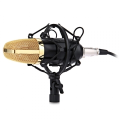 BM-700 Uni-directional Condenser Wired 1 Channels Studio Sound Recording Microphone with Shock Mount black one size none
