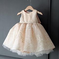 Flower Girl Dress Formal Ball Gown Kids Girl Lace Dress champagne-sleeve 100