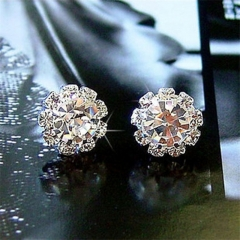 Lady's Fashion diamond stud earrings Jewellery silver color one size